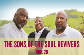 The Sons of the Soul Revivers